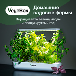 Vegebox